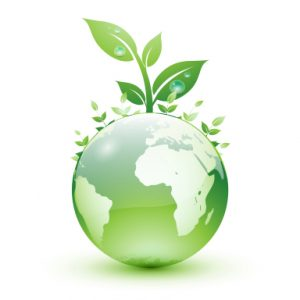 Pest Control Durban use extermination techniques that are greener, safer and foremost Eco-friendly. The Durban Exterminators that care